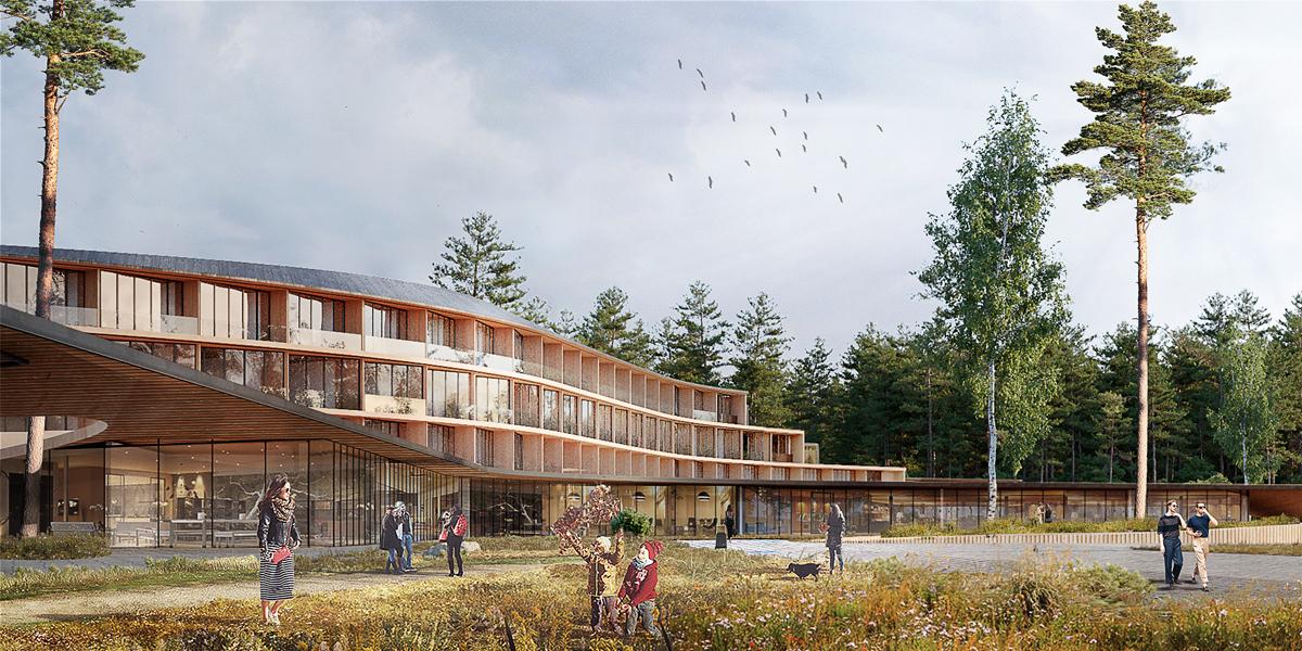 Концепция эко-отеля в Конаково